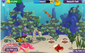 give-fish-love-pos